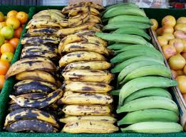 Ripe, medium ripe and green plaintains (web photo). Called the pasta of the Caribbean.